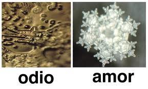MOLECULAS DE AGUA DE ODIO Y AMOR
